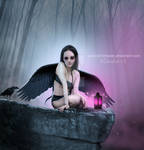 Dark Angel of Light