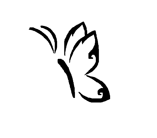 Simple Butterfly Drawing: Simple Butterfly By Shamaya-Wolf On DeviantArt
