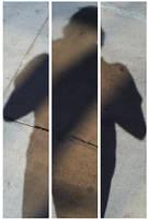 Shadows Three by tygerwulf
