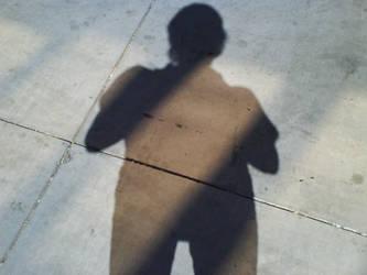 Shadow One by tygerwulf