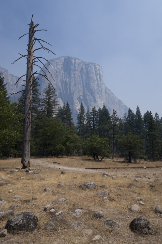 ___Yosemite___ by Symp-thique