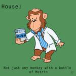 Not Just Any Monkey