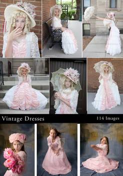 Vintage Dress Gallery Sample