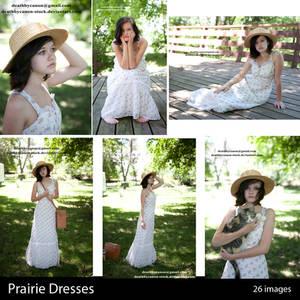 Prairie Dresses Gallery Sample