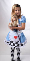 Alice 14 by deathbycanon-stock