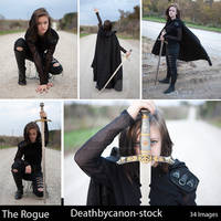 The Rogue Sample Gallery