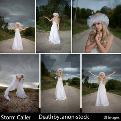 Storm Caller Gallery Sample
