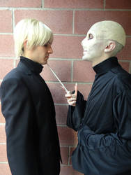 Draco and Voldemort by Groucho91