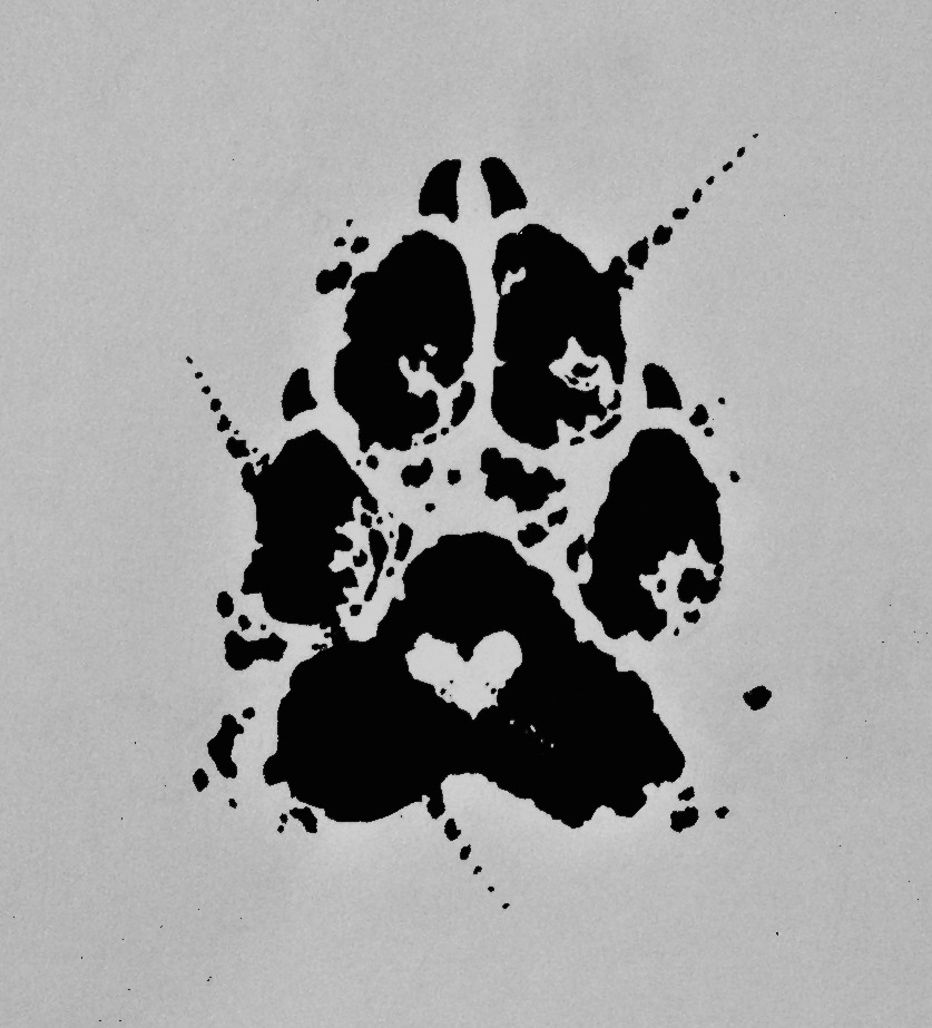 Heart Shaped Paw Prints Tattoos: Pawprint Tattoo Commission By Edeneue On DeviantArt