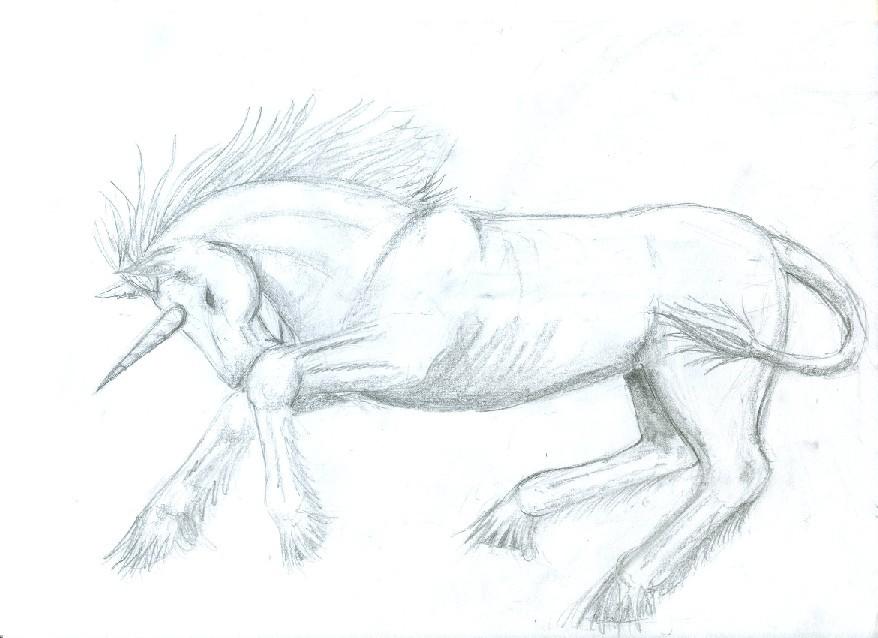 Unicorn Sketch by SmudgedPixelsArt