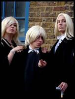 Harry Potter - Happy Families by VanchaAyris