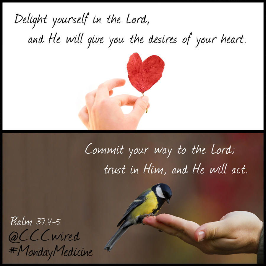 how to delight yourself in the lord