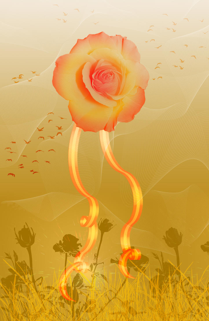 Roses and ribbons by corgraf