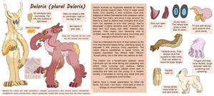 Delorix Species Reference Sheet