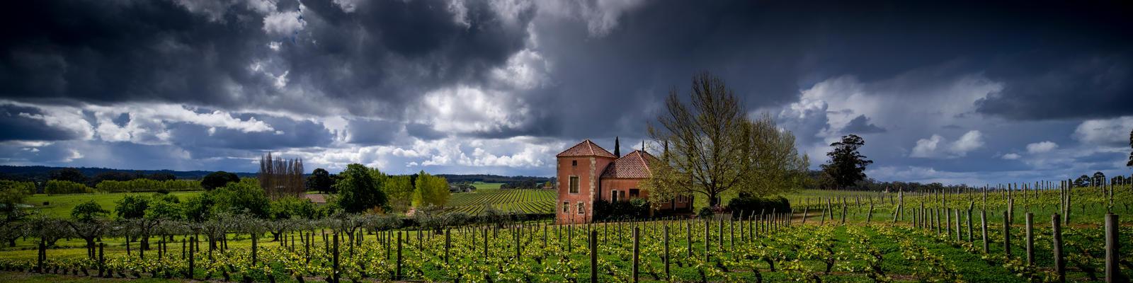 Picardy Winery by ozlizard