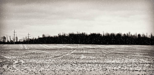 Winterland in Western NY by ahley