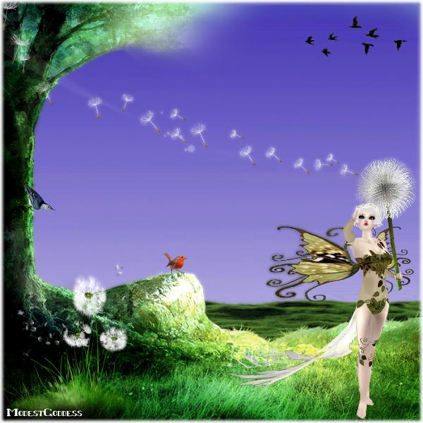 Dandelions by modestgoddess