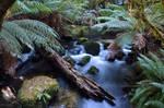 Waters of Tasmania
