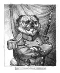 Colonel V. P. Puggerkins