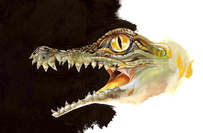 Baby Nile Crocodile by shoomlah