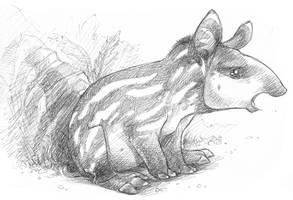 Disgruntled Tapir... by shoomlah
