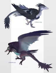 Winged raptor adoptables (closed!) by GlitchLight