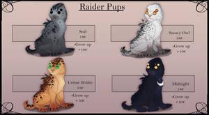 Raider pup adoptable flatsale closed