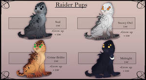 Raider pup adoptable flatsale closed