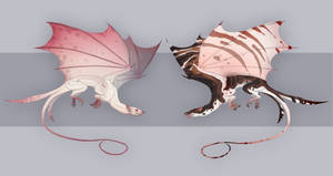 Ratddragon adoptable auctions  closed