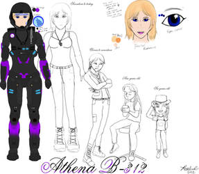 Athena B-312 official reference sheet.