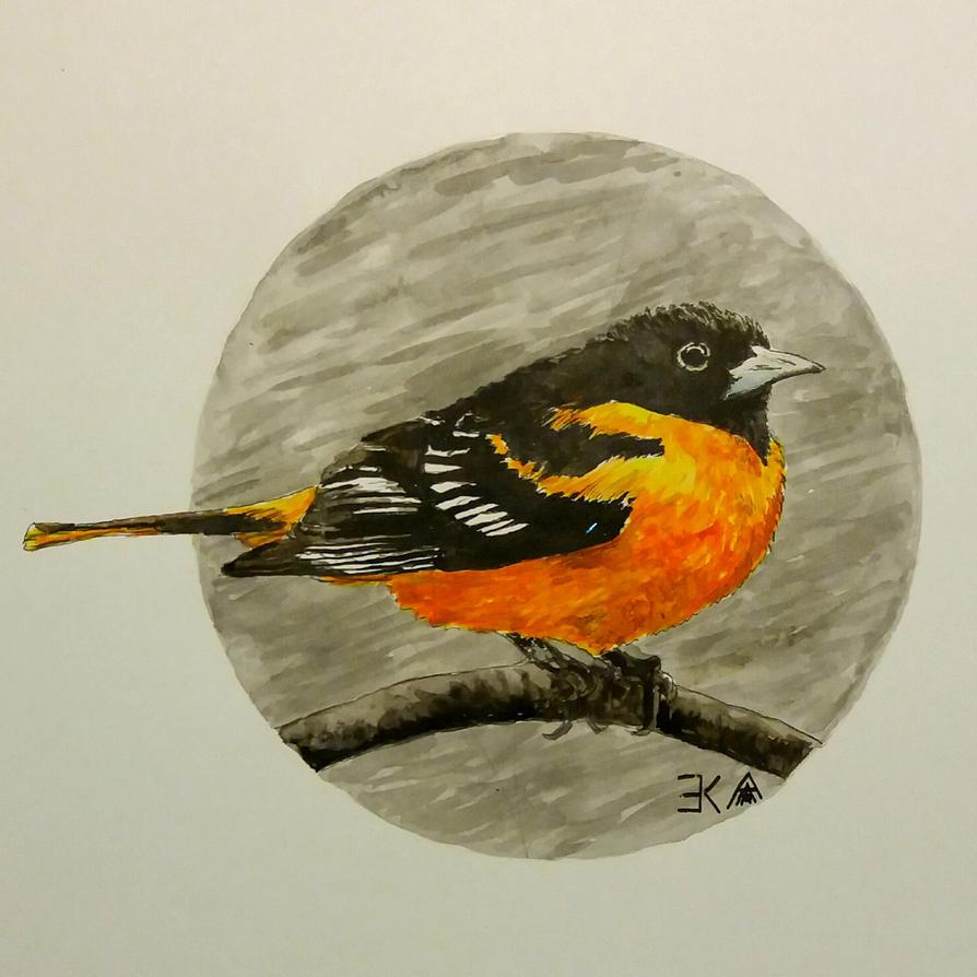 Bird 3 by katr14
