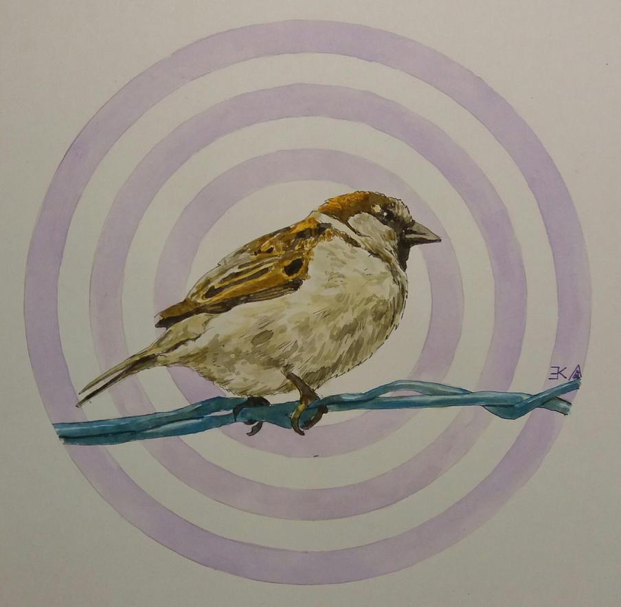 Bird 4 by katr14
