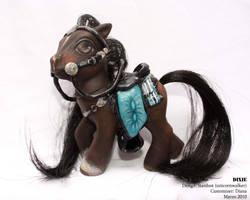 Dixie pony for unicornwalker