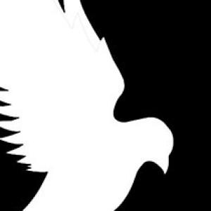 Hundeader's Profile Picture