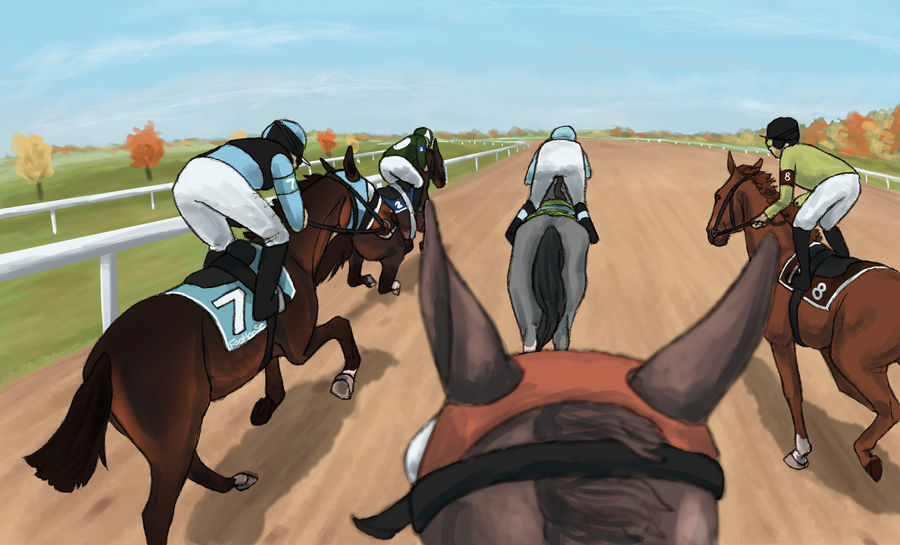 Jockey Cam - Northland Allowance by Storm-Coast