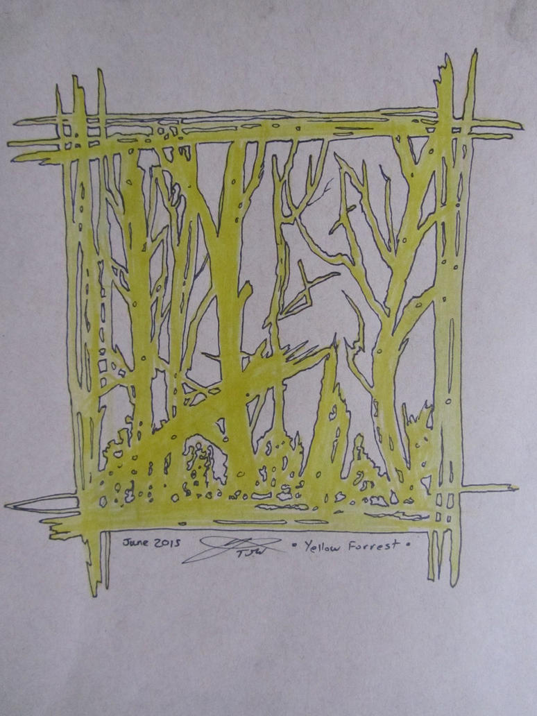 Forest by warnertoddjames