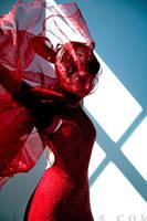 Red I by erikamoen