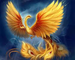 Phoenix by Aniyese