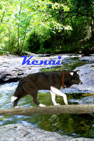 Kenai's Request by MoonShineSTP