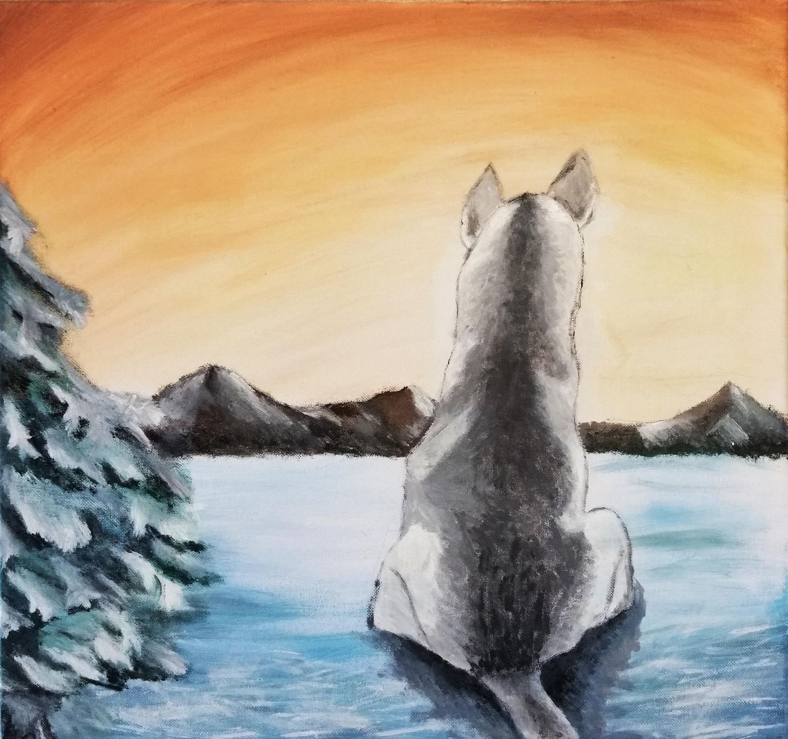 Lone Husky watching over Nordic mountain tops