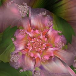 Trapestry+ Flower by FireLilyFractals