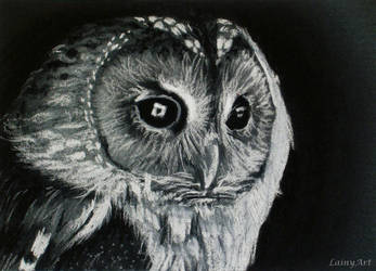 Day 129 - ACEO Drawing project for Charity by secrets-of-the-pen