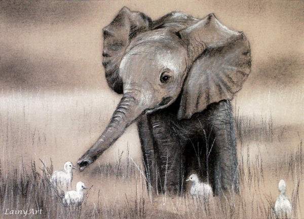 Bildergebnis für elephant drawings