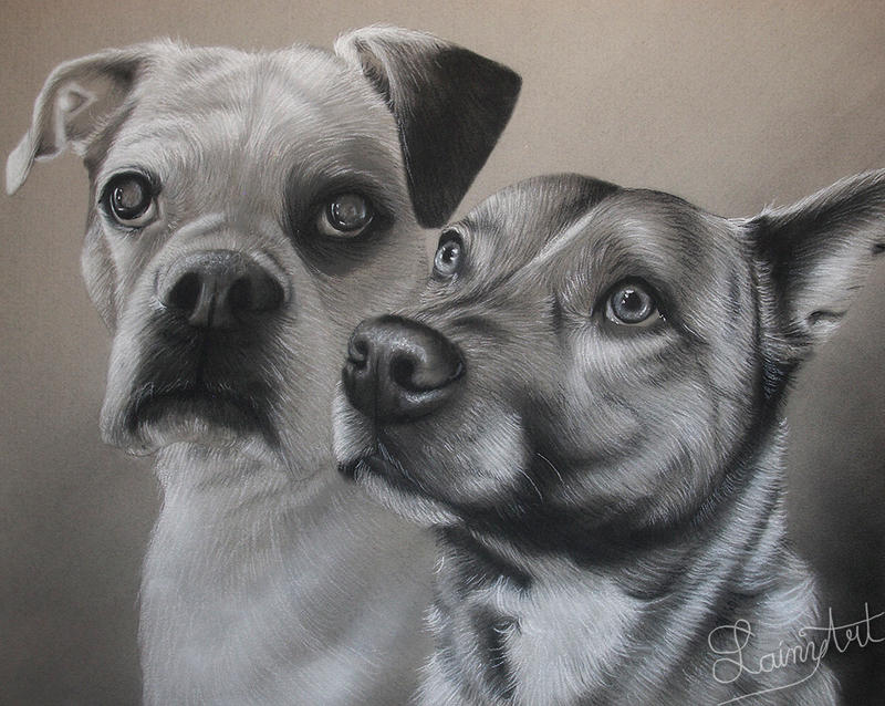 Brittany's Pups - Charcoal Commission by secrets-of-the-pen