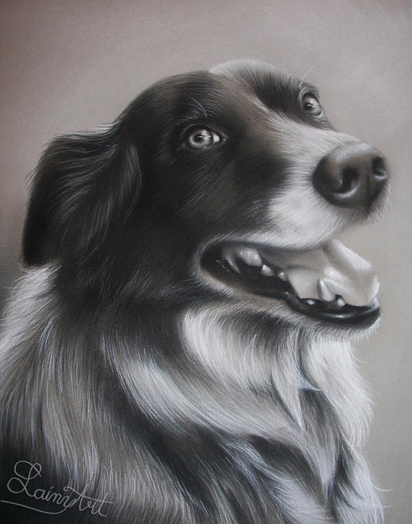 For Landall - Charcoal Commission by secrets-of-the-pen