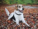 Lisa's Leaves - Pastel Commission