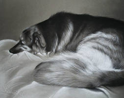 Resting Rigsby - Charcoal Commission by secrets-of-the-pen