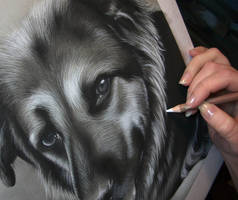 Rigsby's Smile - Charcoal Commission WIP by secrets-of-the-pen