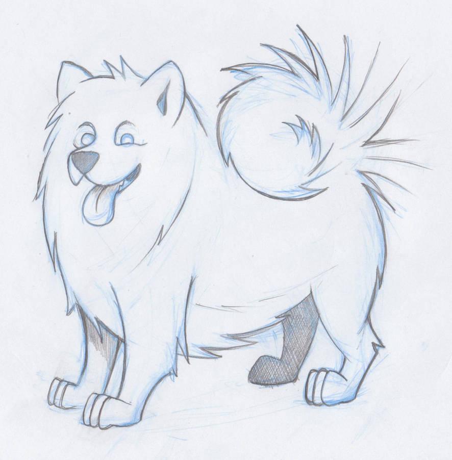 Samoyed Dog Sketch By Timmcfarlin On Deviantart