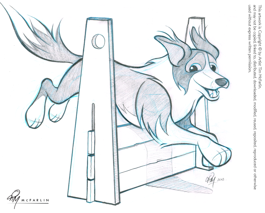 border collie caricature sketch by timmcfarlin